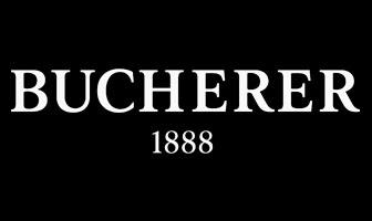 ремонт bucherer